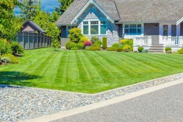 Tittar du också på gräsmattan hos grannen?